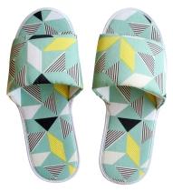 geogreen_slippers