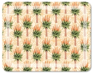 rectangulartrays_large_aloes